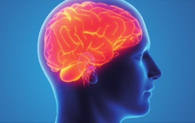 Image result for Different Types of Brain Injury & Its Severity