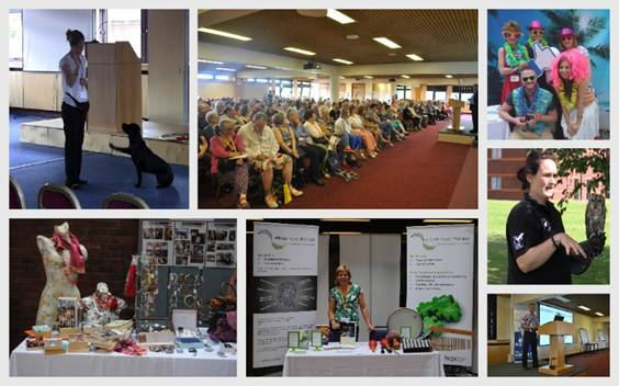 Collage of images from across the Way Ahead conference in 2015, showing the Brainy Dogs, falconry and a variety of information exhibition stands and presentations.